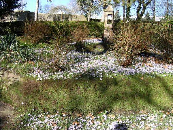 In den Linda Vista Gardens