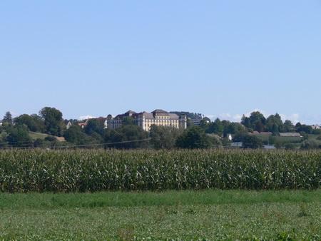 Das Schloss, vom Moos aus