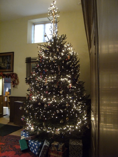 Weihnachtsbaum im Quartier der Wirtschafterin