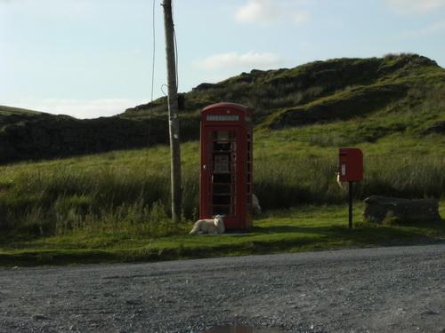 An der Mountain Road nach Abergwesyn