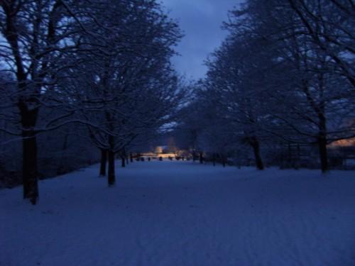Im Gavenny-Park
