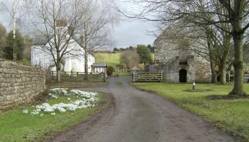 Farm bei Bettws Newydd