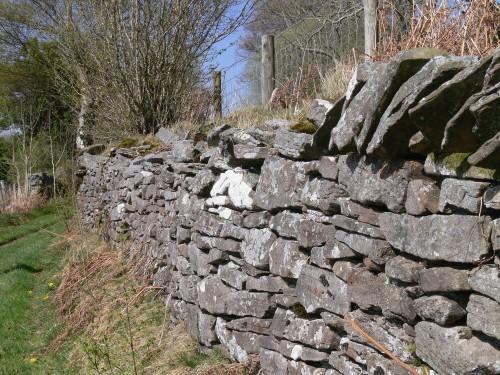 Mauer am Wegesrand