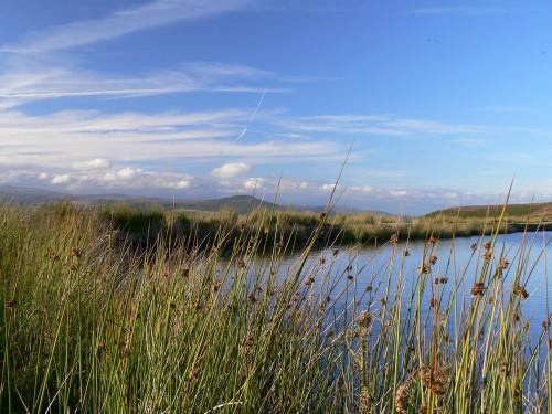 Am Keeper's Pond, im Hintergrund der Sugar Loaf